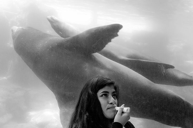 pacific-aquarium-lipstick-lady
